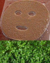 mặt nạ tảo biển nhật bản 2