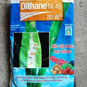 Dithane m45 cho lan