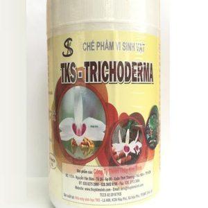 phun trichoderma cho lan