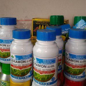 thuốc dekamon kích thích tăng trưởng