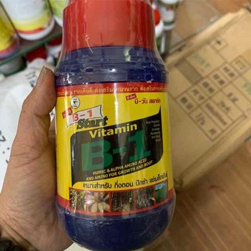B1 thái lọ 500 ml