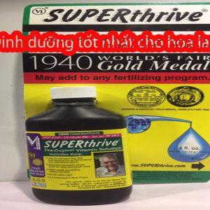 superthrive hoa lan