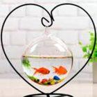 bể cá mini hình trái tim