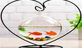 bể cá mini để bàn hình trái tim