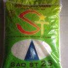 gao st25